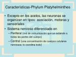 caracter sticas phylum platyhelminthes5