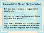 caracter sticas phylum platyhelminthes8