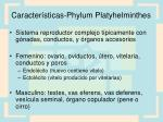 caracter sticas phylum platyhelminthes9