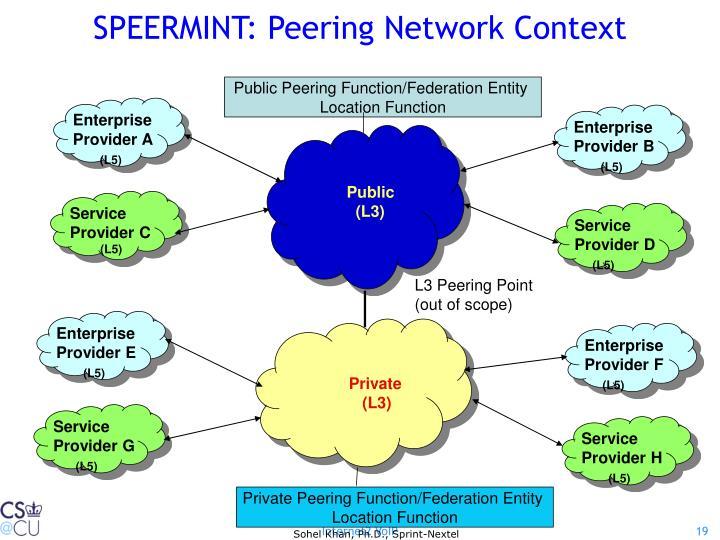SPEERMINT: Peering Network Context