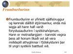 frumbur urinn