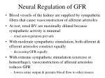 neural regulation of gfr