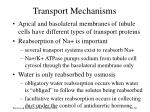 transport mechanisms