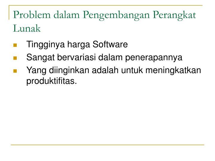 Problem dalam Pengembangan Perangkat Lunak