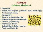 h pnoz kullan m alanlar 1