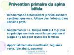 pr vention primaire du spina bifida