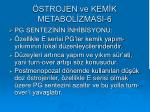 strojen ve kem k metabol zmasi 6