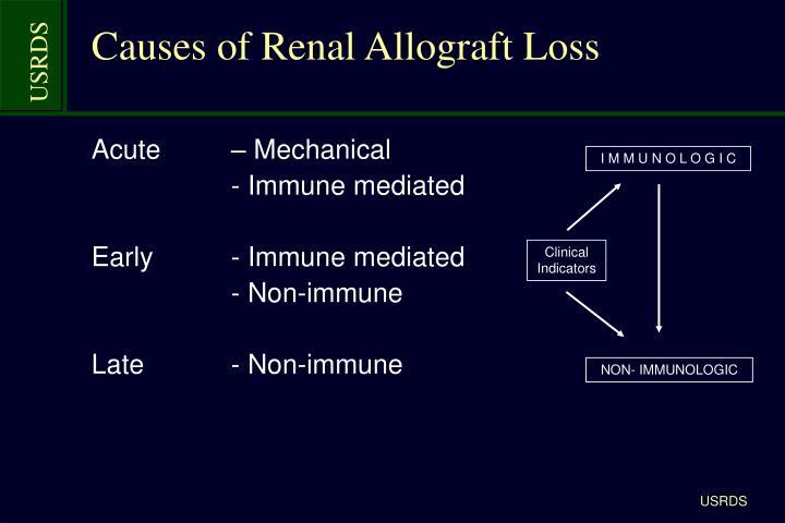 Causes of Renal Allograft Loss