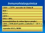 inmunohistoqu mica