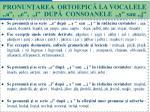 pronun area ortoepic la vocalele a e i dup consoanele sau j