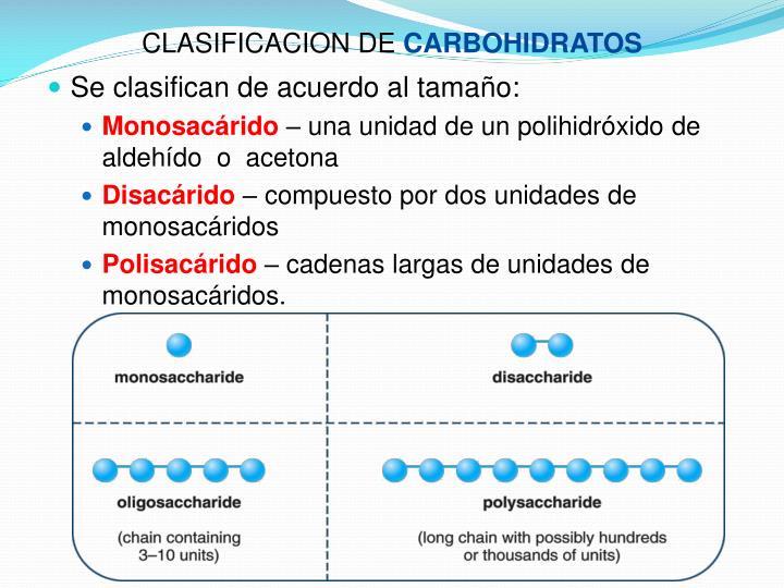 CLASIFICACION DE
