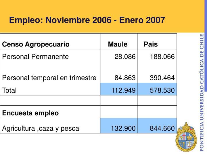 Empleo: Noviembre 2006 - Enero 2007