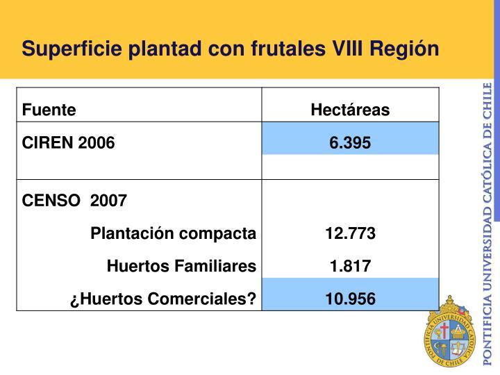 Superficie plantad con frutales VIII Región
