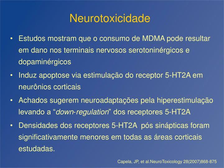 Neurotoxicidade