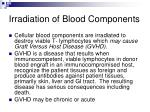 irradiation of blood components1