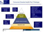 consumer directed health plan prototype