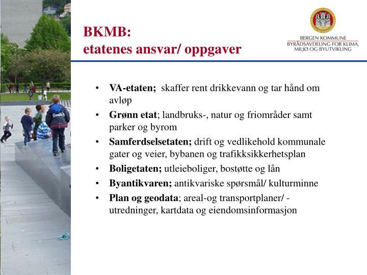 BKMB: