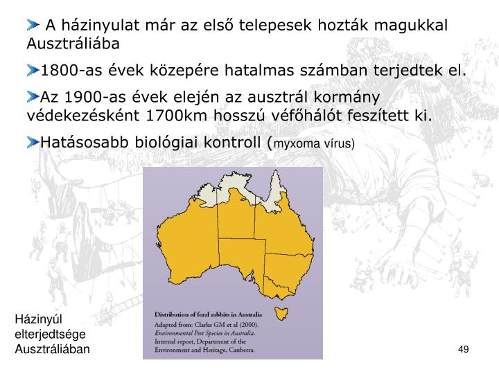A házinyulat már az első telepesek hozták magukkal Ausztráliába