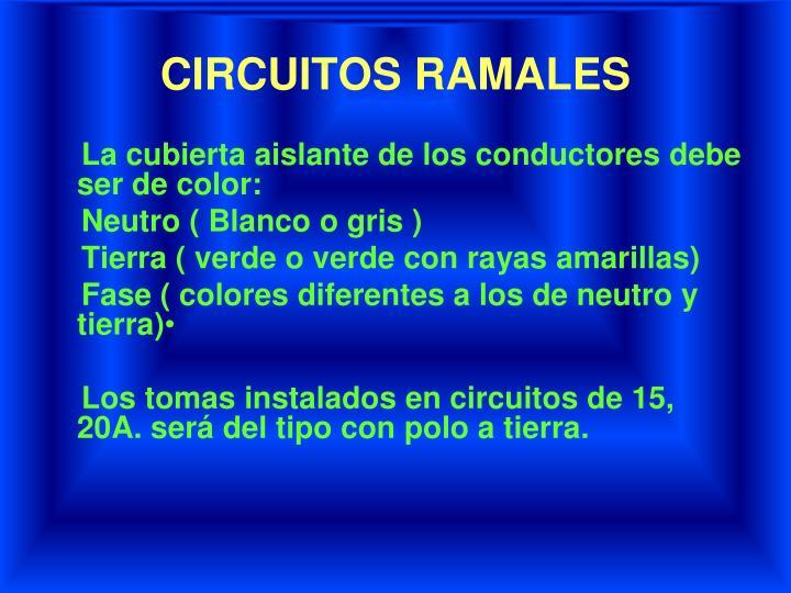 CIRCUITOS RAMALES