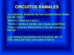 circuitos ramales1