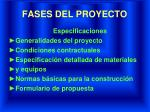 fases del proyecto4