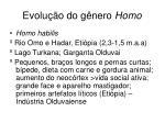 evolu o do g nero homo