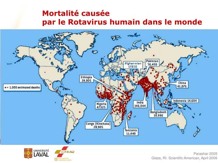 Mortalité causée