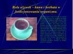 rola u ywek kawa i herbata w funkcjonowaniu organizmu