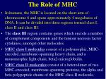 the role of mhc3