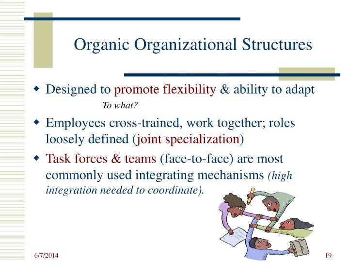 Organic Organizational Structures