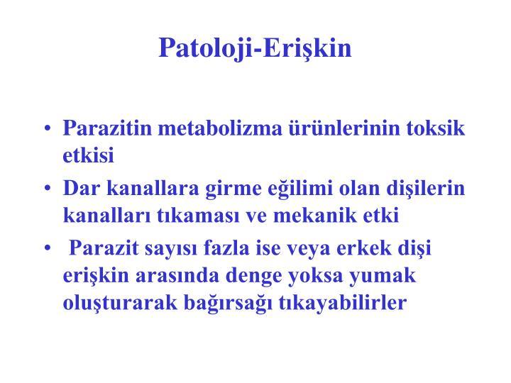 Patoloji-Erişkin