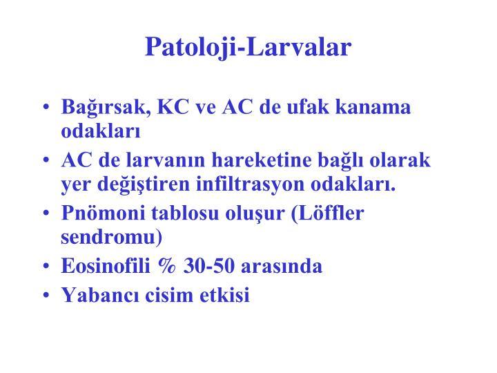 Patoloji-Larvalar