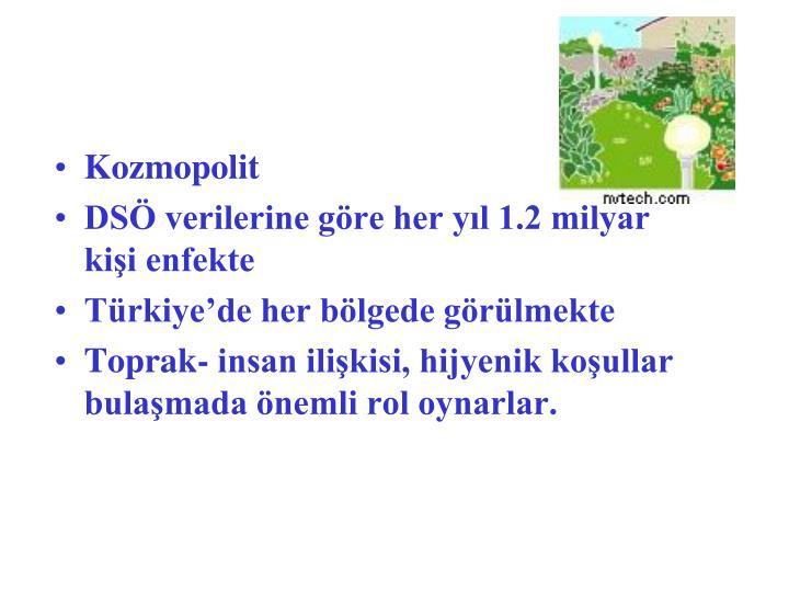 Kozmopolit