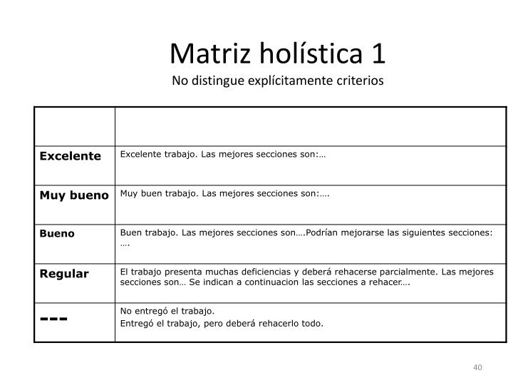 Matriz holística 1