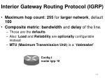 interior gateway routing protocol igrp