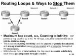 routing loops ways to stop them