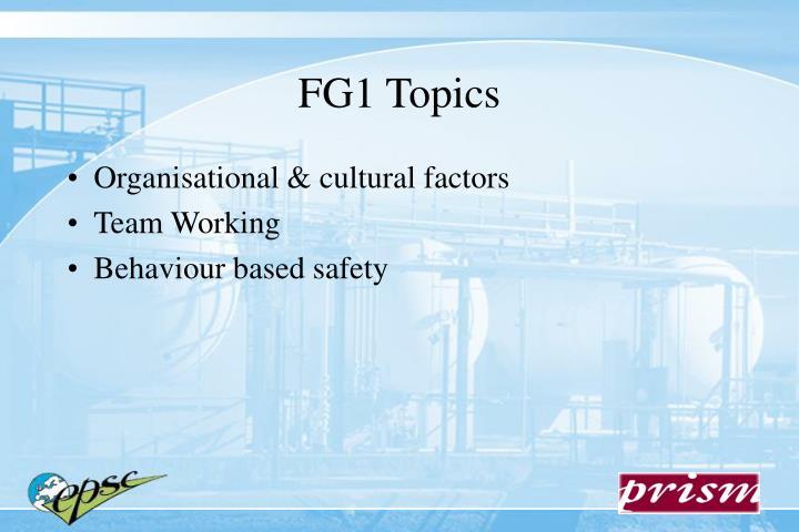 Organisational & cultural factors