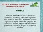 oxydol tratamiento de lagunas de oxidaci n en cerdos