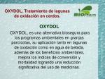 oxydol tratamiento de lagunas de oxidaci n en cerdos1