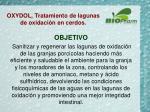 oxydol tratamiento de lagunas de oxidaci n en cerdos2