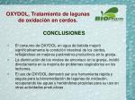 oxydol tratamiento de lagunas de oxidaci n en cerdos20