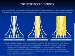 principios t cnicos12