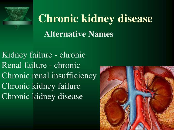 PPT - Chronic kidney disease PowerPoint Presentation, free ...