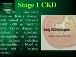 stage 1 ckd