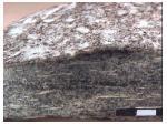 gneiss sillimanite chantillon grossi