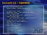 datagrid1