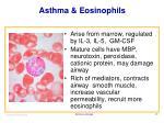 asthma eosinophils