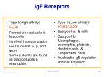 ige receptors