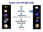 xolair wie anti ige wirkt