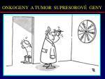 onkogeny a tumor supresorov geny